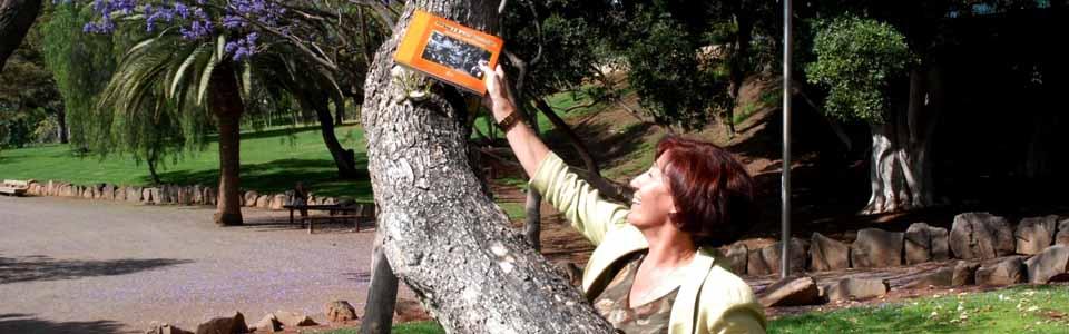 Inés Rojas poniendo un libro en un arblo