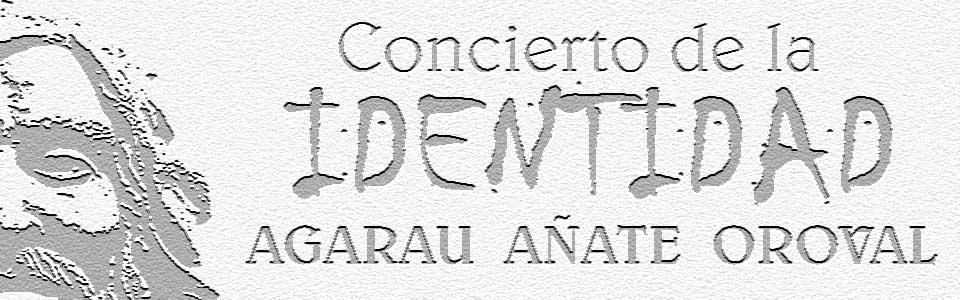 Concierto identidad_wide